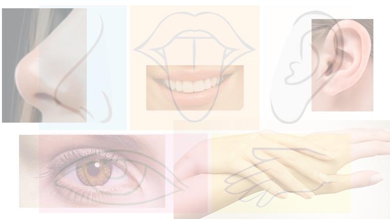 Los 5 sentidos en el sexo - Ayni Magazine Revista Digital America Latina